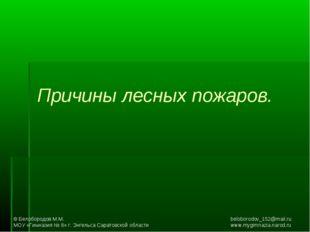 Причины лесных пожаров. © Белобородов М.М.beloborodov_152@mail.ru МОУ «