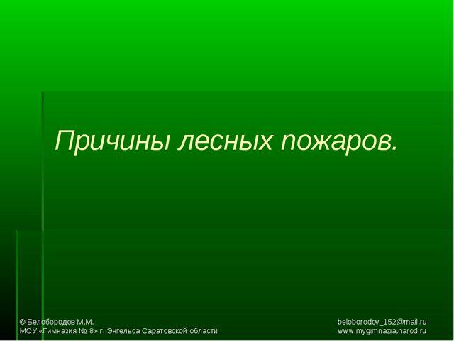 Причины лесных пожаров. © Белобородов М.М.beloborodov_152@mail.ru МОУ «...
