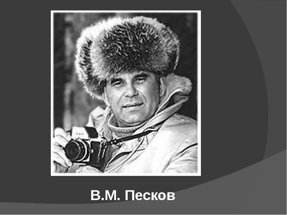 В.М. Песков