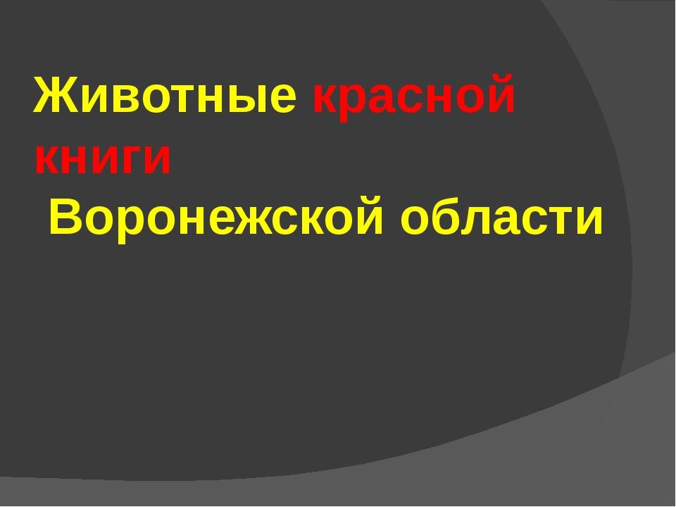 Животные красной книги Воронежской области