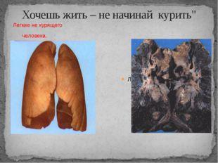 """Хочешь жить – не начинай курить"""" Легкие не курящего человека. Легкие курящего"""