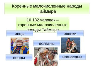 10 132 человек – коренные малочисленные народы Таймыра энцы ненцы нганасаны д