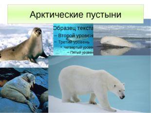 Арктические пустыни . Арктические пустыни занимают архипелаг Северная Земля,
