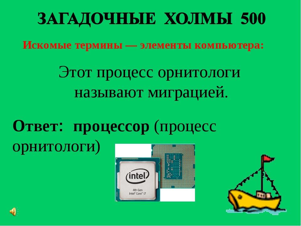 Искомые термины — элементы компьютера: Ответ: процессор(процесс орнитологи)...
