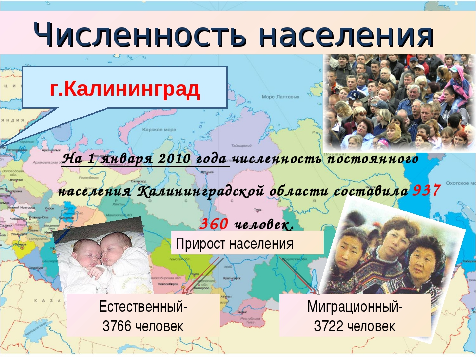 На 1 января 2010 года численность постоянного населения Калининградской облас...