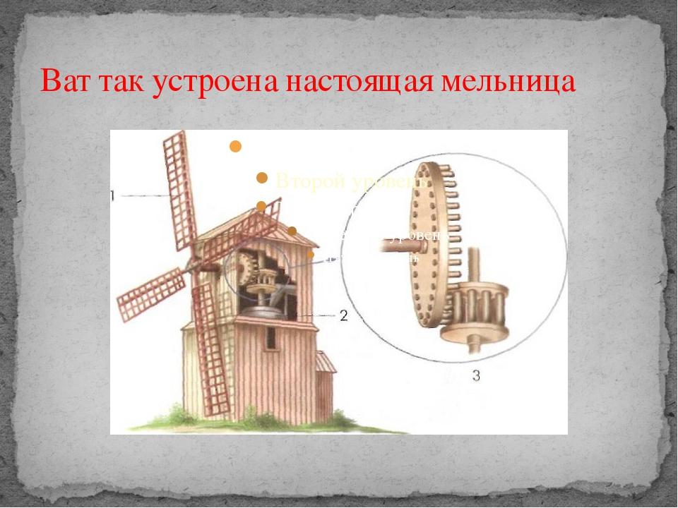 Ват так устроена настоящая мельница