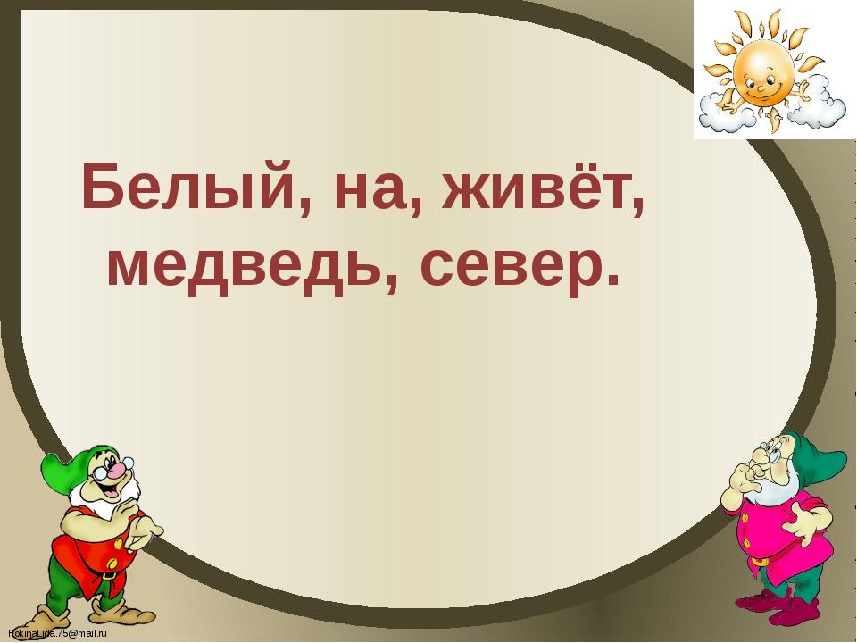 Белый, на, живёт, медведь, север. FokinaLida.75@mail.ru