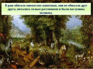 В раю обитало множество животных, они не обижали друг друга, питались только
