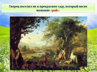 Творец поселил их в прекрасном саду, который носит название «рай».