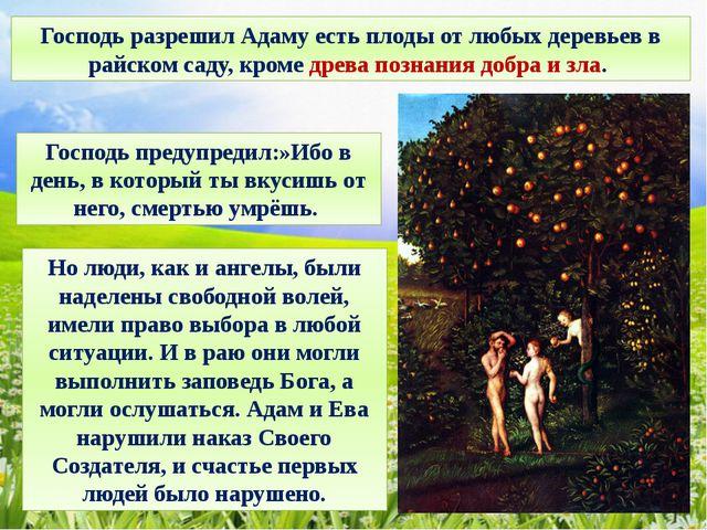 Господь разрешил Адаму есть плоды от любых деревьев в райском саду, кроме дре...