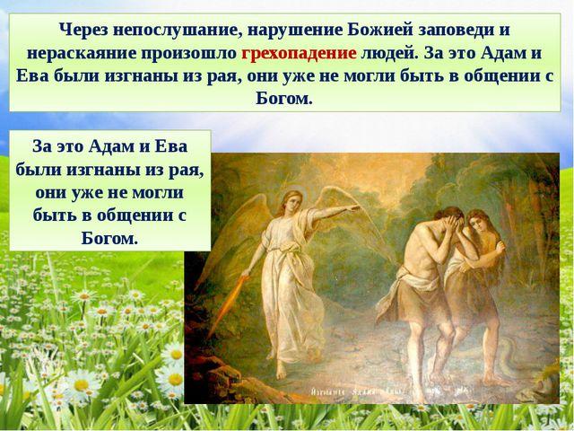 Через непослушание, нарушение Божией заповеди и нераскаяние произошло грехопа...