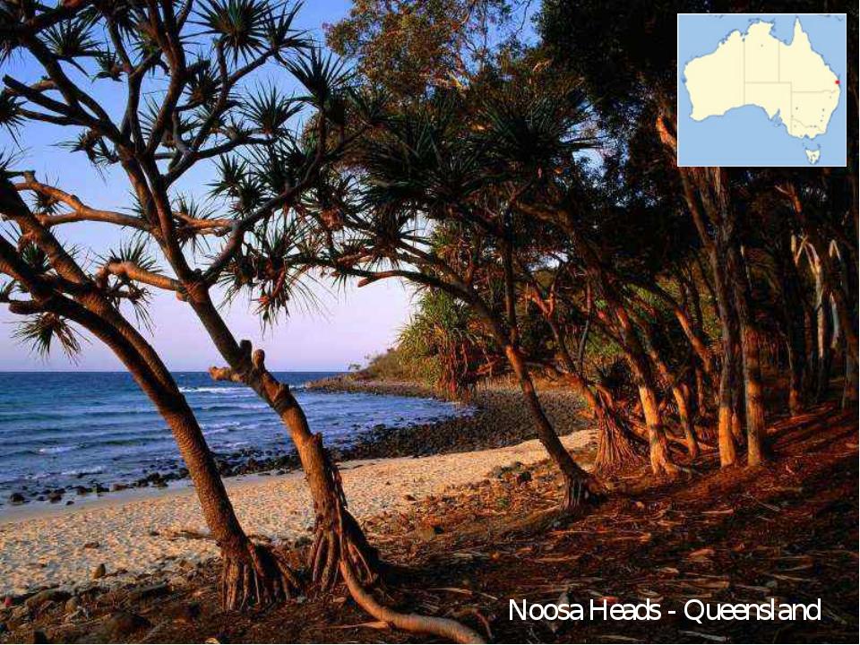 Noosa Heads - Queensland