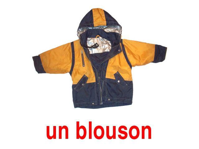 un blouson