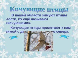 В нашей области зимуют птицы -гости, их ещё называют «кочующими». Кочую