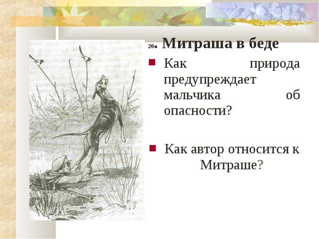 20. Митраша в беде Как природа предупреждает мальчика об опасности? Как автор...