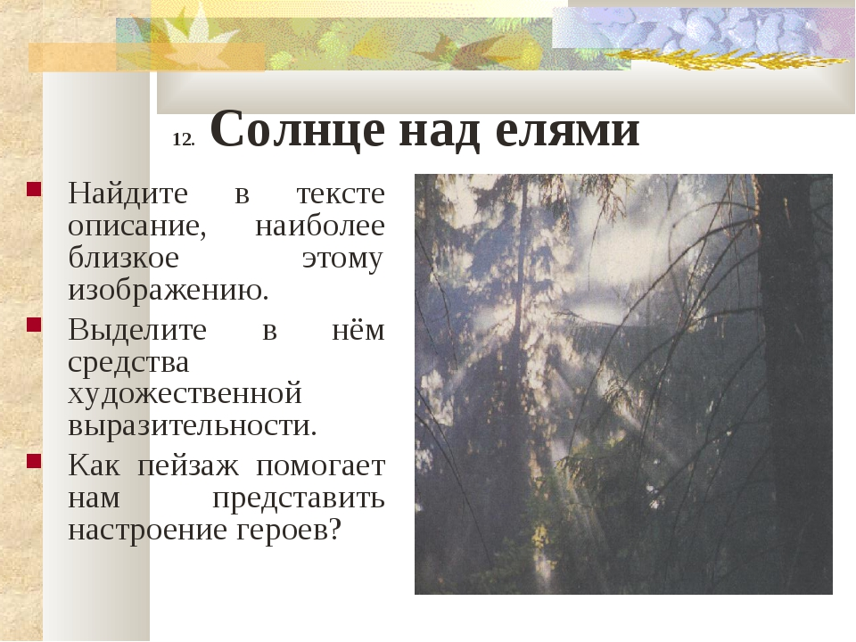 12. Солнце над елями Найдите в тексте описание, наиболее близкое этому изобра...