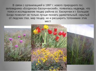 В связи с организацией в 1997 г. нового природного гос. заповедника «Богдинск