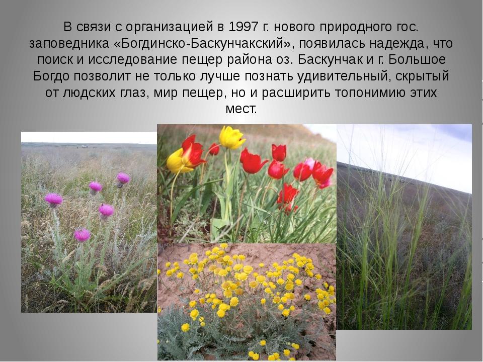 В связи с организацией в 1997 г. нового природного гос. заповедника «Богдинск...