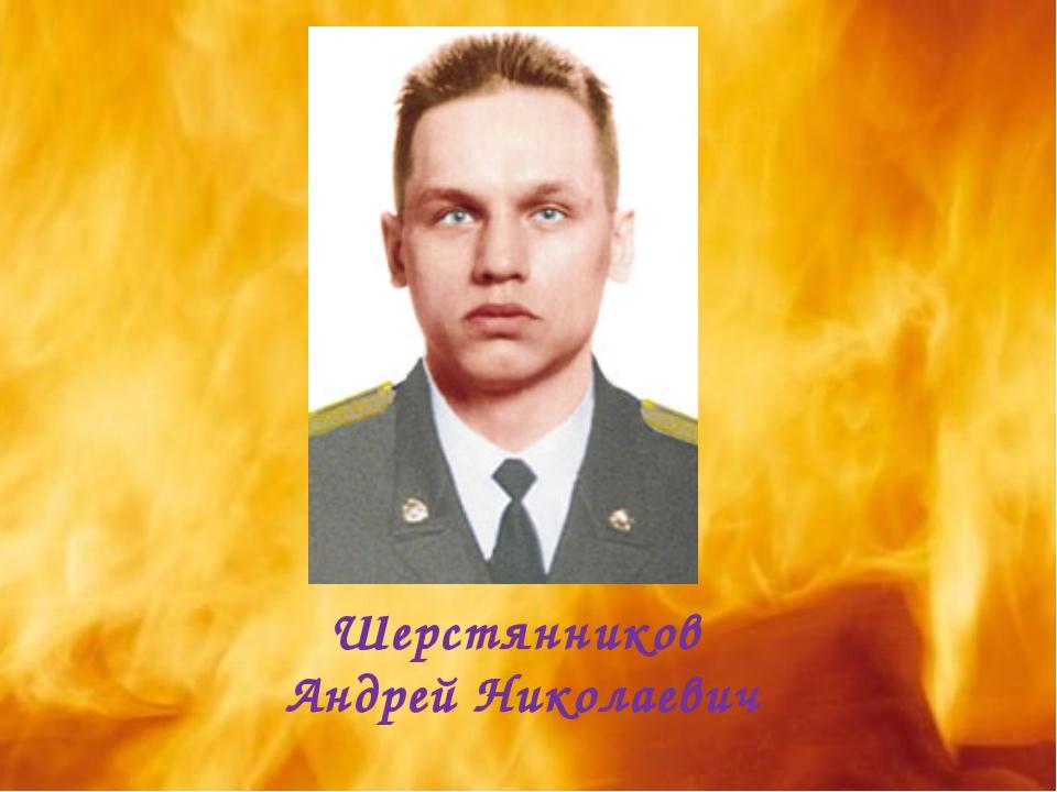 Шерстянников Андрей Николаевич