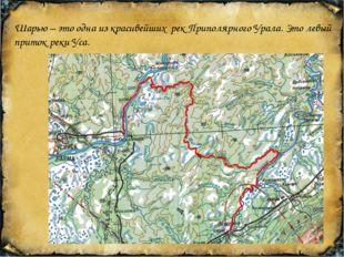 Шарью – это одна из красивейших рек Приполярного Урала. Это левый приток рек