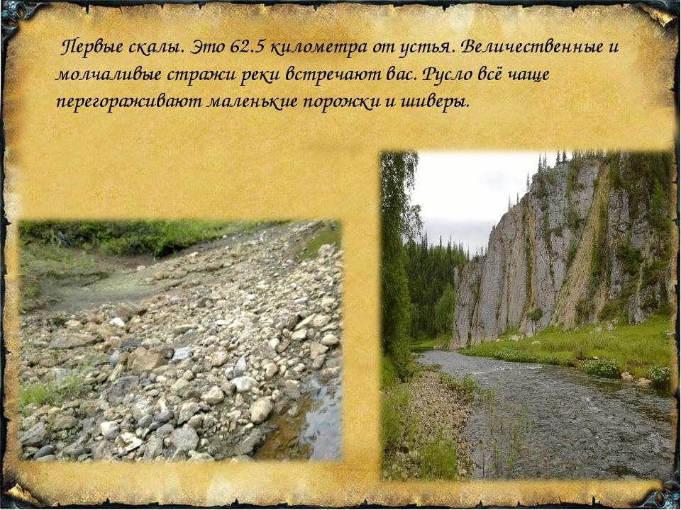 Первые скалы. Это 62.5 километра от устья. Величественные и молчаливые страж...