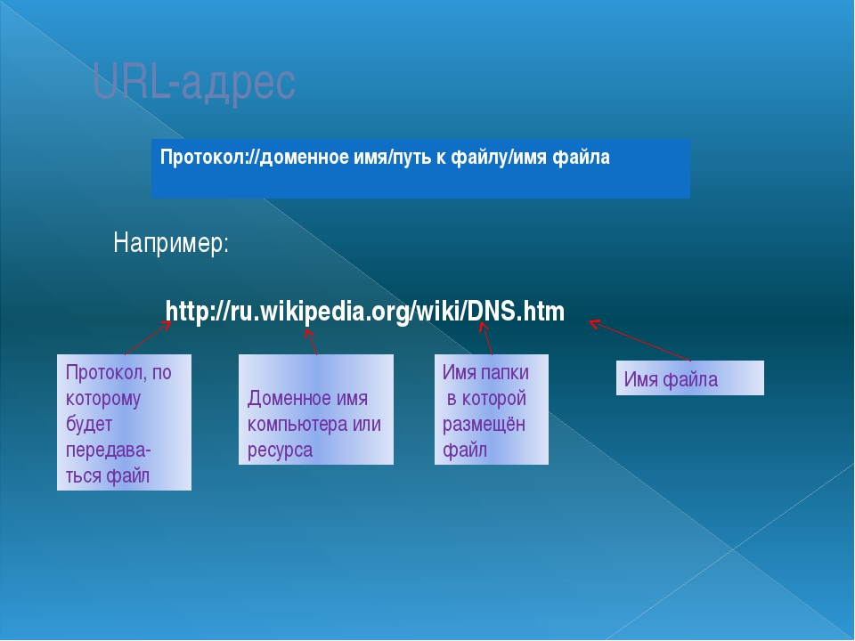 URL-адрес Например: http://ru.wikipedia.org/wiki/DNS.htm Протокол, по котором...