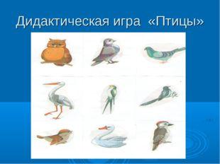 Дидактическая игра «Птицы»