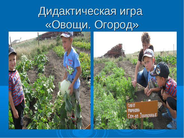 Дидактическая игра «Овощи. Огород»