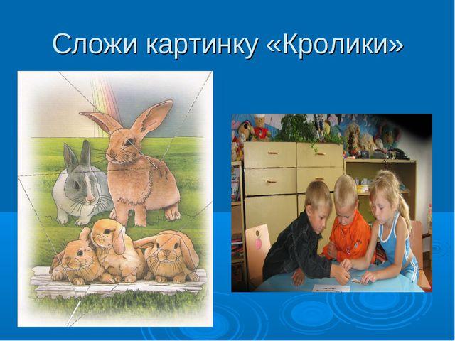 Сложи картинку «Кролики»