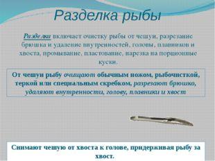 Разделка рыбы Разделкавключает очистку рыбы от чешуи, разрезание брюшка и уд