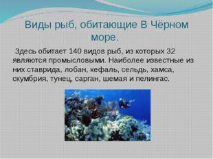 Виды рыб, обитающие В Чёрном море. Здесь обитает 140 видов рыб, из которых 32
