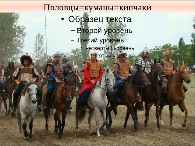 Половцы=куманы=кипчаки