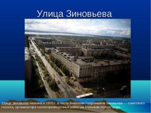 Улица Зиновьева Улица Зиновьева названа в 1970 г. в честь Анатолия Георгиевич