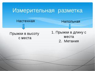Измерительная разметка Настенная Напольная Прыжки в высоту с места 1. Прыжки