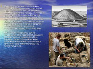 На территории Калмыкии расположено более тысячи курганов, из которых изучено