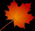 D:\МУЗЫКА 1\5 Музыка осени\осень картинки\лист осень клен.png