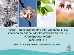 Презентацию выполнила учитель начальных классов филиала МБОУ «Кочёвская СОШ»