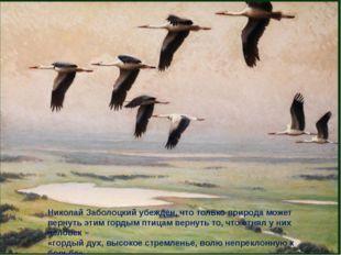 Николай Заболоцкий убежден, что только природа может вернуть этим гордым птиц