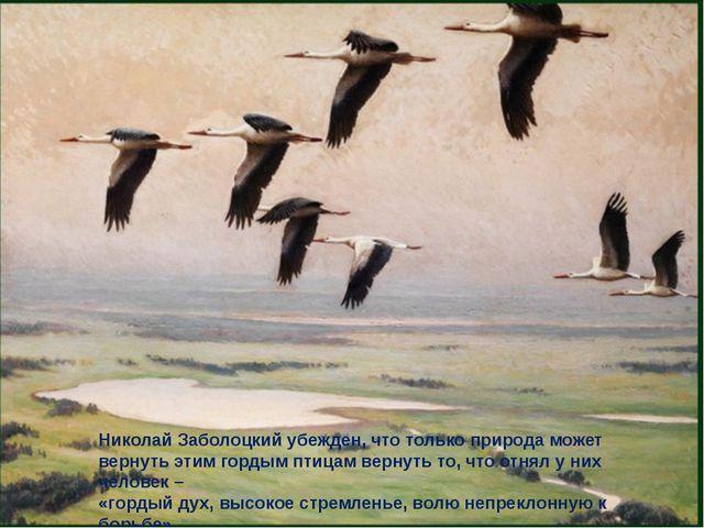 Николай Заболоцкий убежден, что только природа может вернуть этим гордым птиц...