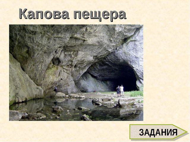 Капова пещера ЗАДАНИЯ