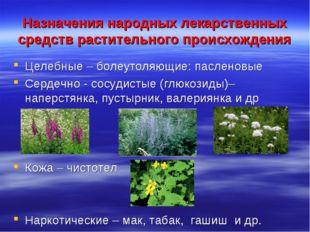Назначения народных лекарственных средств растительного происхождения Целебны