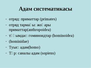 Адам систематикасы отряд: приматтар (primates) отряд тармағы: жоғары приматта