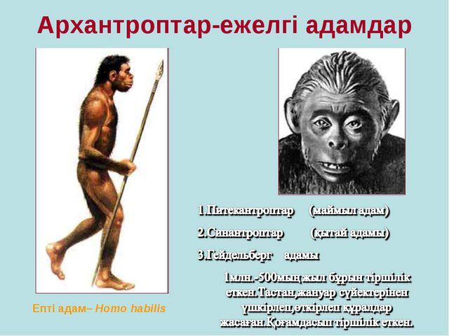 Архантроптар-ежелгі адамдар Епті адам– Homo habilis
