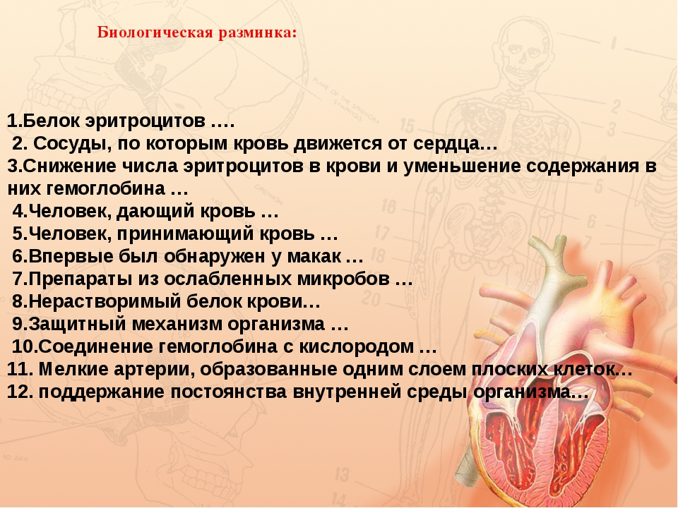 Биологическая разминка: 1.Белок эритроцитов …. 2. Сосуды, по которым кровь дв...