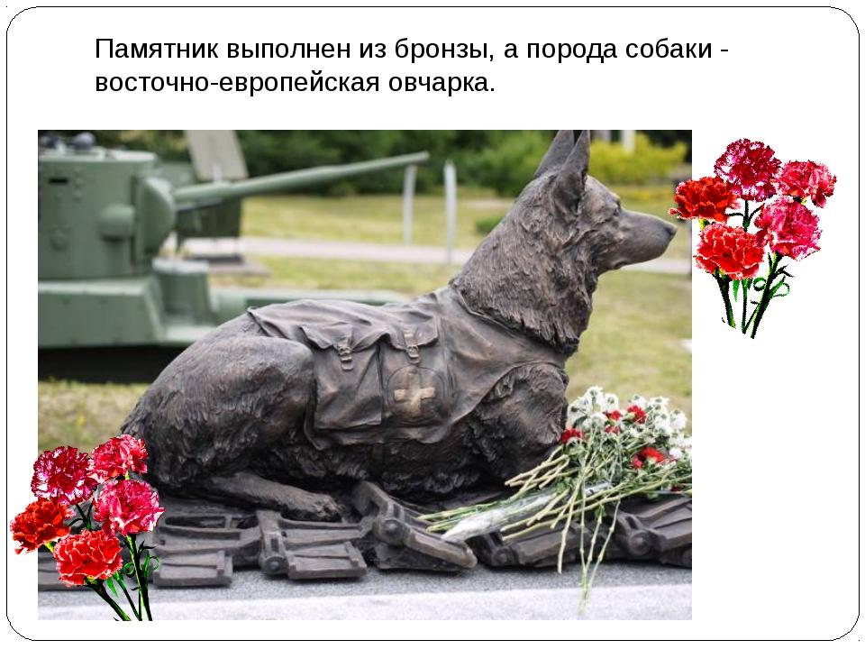 Памятник выполнен из бронзы, а порода собаки - восточно-европейская овчарка.