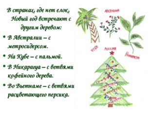 В странах, где нет елок, Новый год встречают с другим деревом: В Австралии –