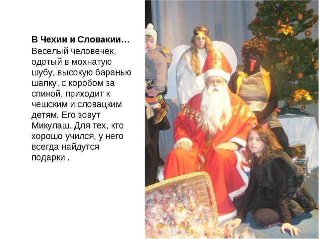 В Чехии и Словакии…Веселый человечек, одетый в мохнатую шубу, высокую барань...