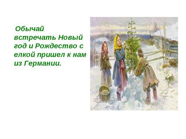 Обычай встречать Новый год и Рождество с елкой пришел к нам из Германии.