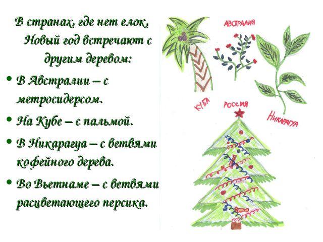 В странах, где нет елок, Новый год встречают с другим деревом: В Австралии –...