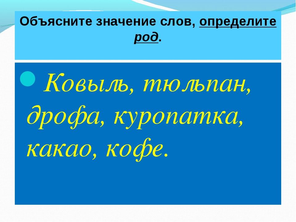 Объясните значение слов, определите род. Ковыль, тюльпан, дрофа, куропатка, к...
